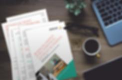 Dossier bilan de compétences Master édition