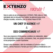 Annonce offre d'emploi Extenzo