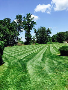 Mike's Lawn and & Landscaping Lawn Mowing Property Maintenance Landscaping Glen MIlls PA 19342