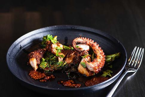 Bello-Octopus.jpg