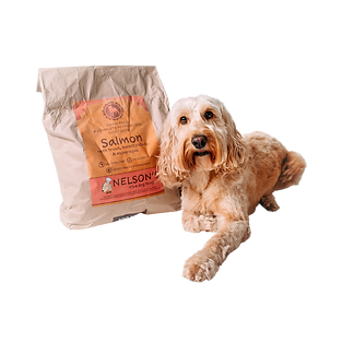 Nelson with dog food bag .png