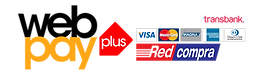 logo-webpay-plus-3-copy.png