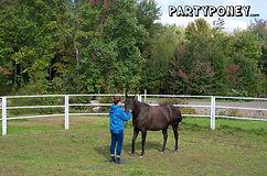 Randonnée à cheval granby