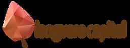 longvere_capital_logo.png