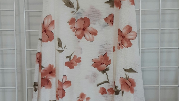 BNWT  Papillon Dress size XL