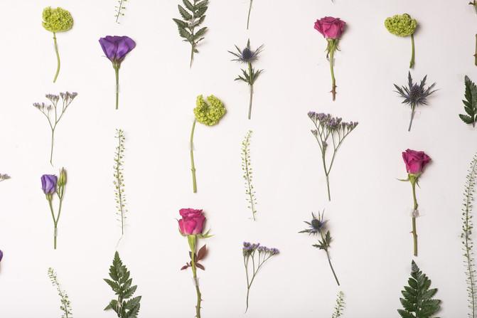 flower_wall_2.jpg