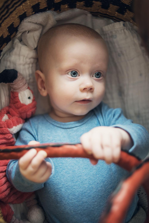 Babyfotografering Uppsala Stockholm