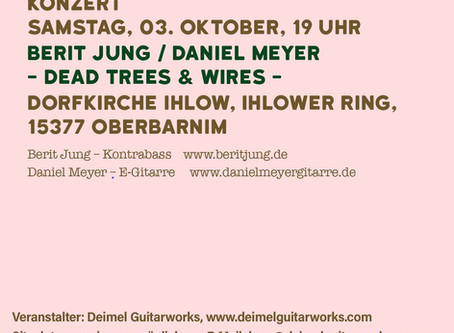 Konzert - Dead Trees & Wires -