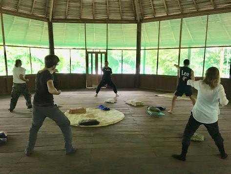 Ayahuasca Retreat, Pisatahua.org, Riberalta, Bolivia, Plant Medicine Center