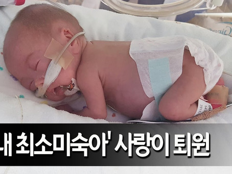 Medical School Admission, Korean Applicant, Premature Baby