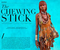 chewing stick africa dental hygiene.jpg