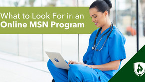 MSN Online Nursing and Health Studies, Missions