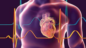 Fellowship Program in Cardiology, Indian Cardiologist with Extensive Experience