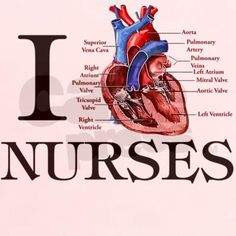MSN, ANP, Cardiology Nurse, Russian Immigrant, Nursing Statement of Purpose