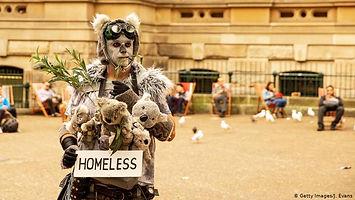 homeless animals australia.jpg
