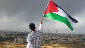 Sample Disadvantaged Student Status Essay, Palestinian Applicant Example