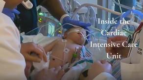 DNP Nurse Anesthesia Personal Statement, Ballet Dancer, Cardiothoracic ICU (CTICU)