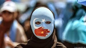 Uyghur PHD Education Personal Purpose, Writing, Editing Help