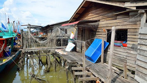 Fishing Village in Malaysia to Dental School in America, Writing the Disadvantaged Status Essay