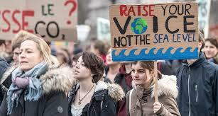 raise voice not sea level
