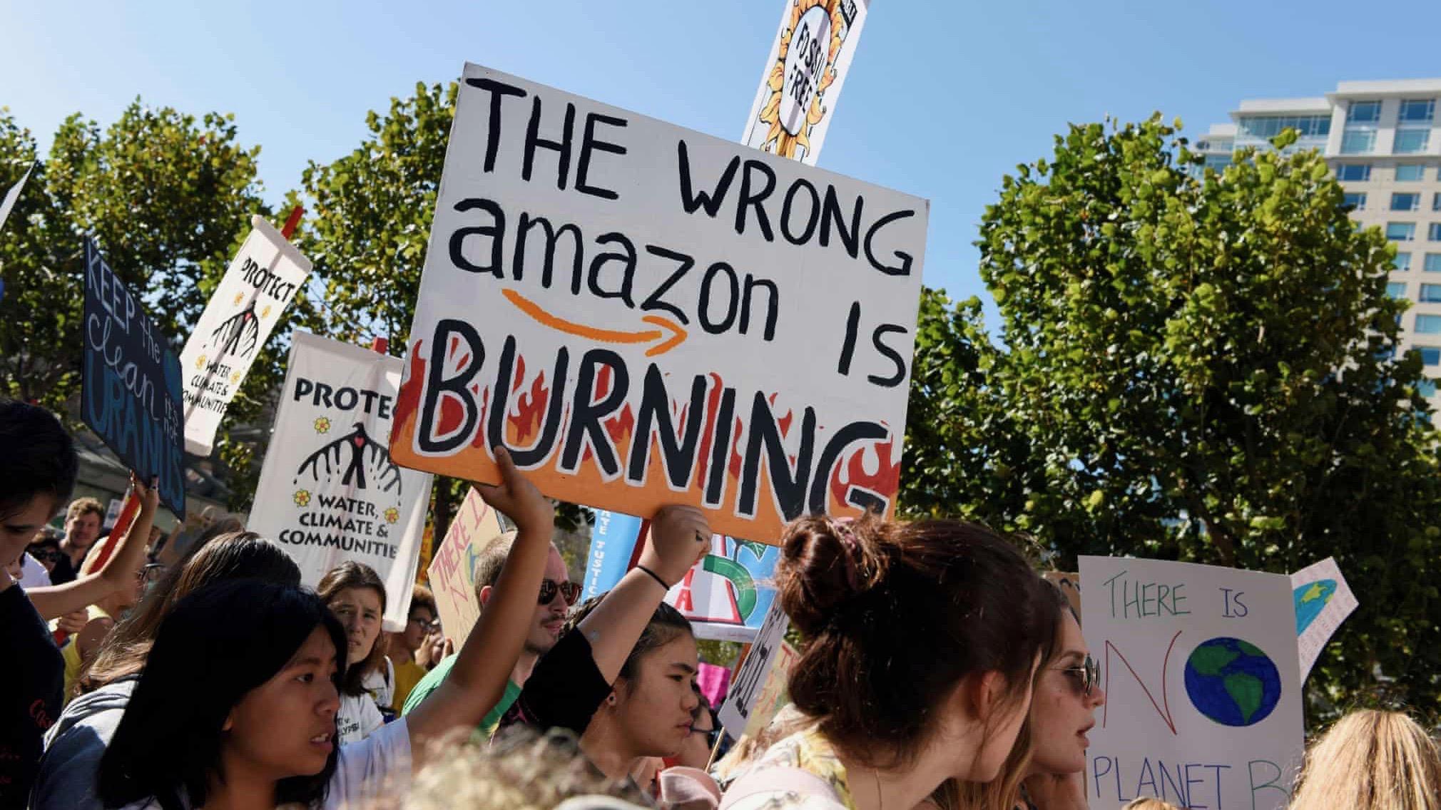 wrong amazon is burning