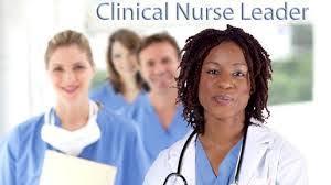 Doctor of Nursing Practice Degree, DNP Education, Transplants, Gerontology