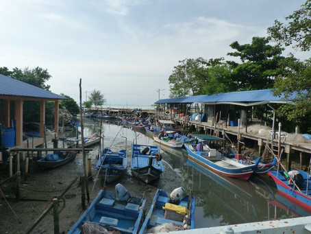 Asian Dental School Success Story, Fishing Village in Malaysia to Dentist in America