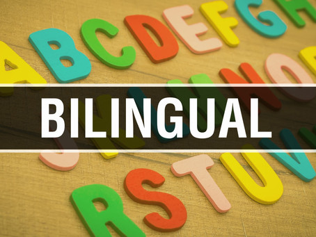 SLP Master's, Speech Therapy, Native-American, Mexican, Bilingual Spanish, Diversity Example