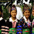 Hmong Community Health, MPH Application, Public Health, Laotian Parents, Refugee Camp in Thailand