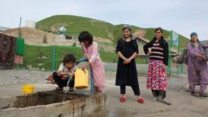 PreMed Certificate, Applicant from Tajikistan