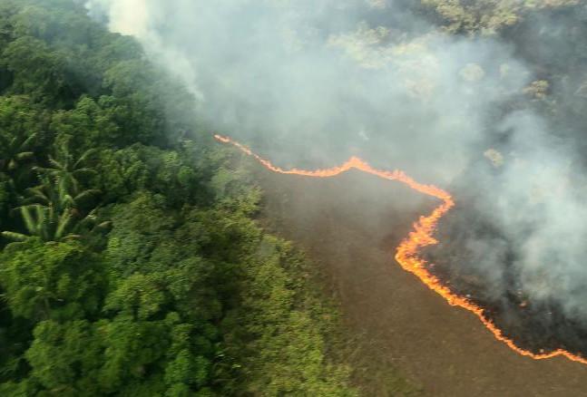 Amazon fire Bolivia.jpg
