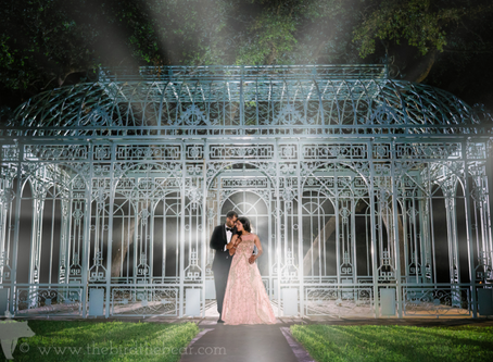 Virtual Weddings, Events, and Celebrations