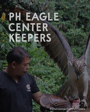 ph eagle 1.jpg
