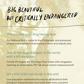 Inforgraphic by Max Garcia