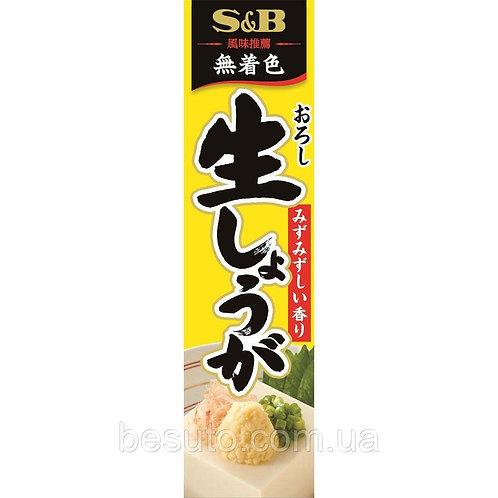 Имбирь японский тертый сырой  в тюбике