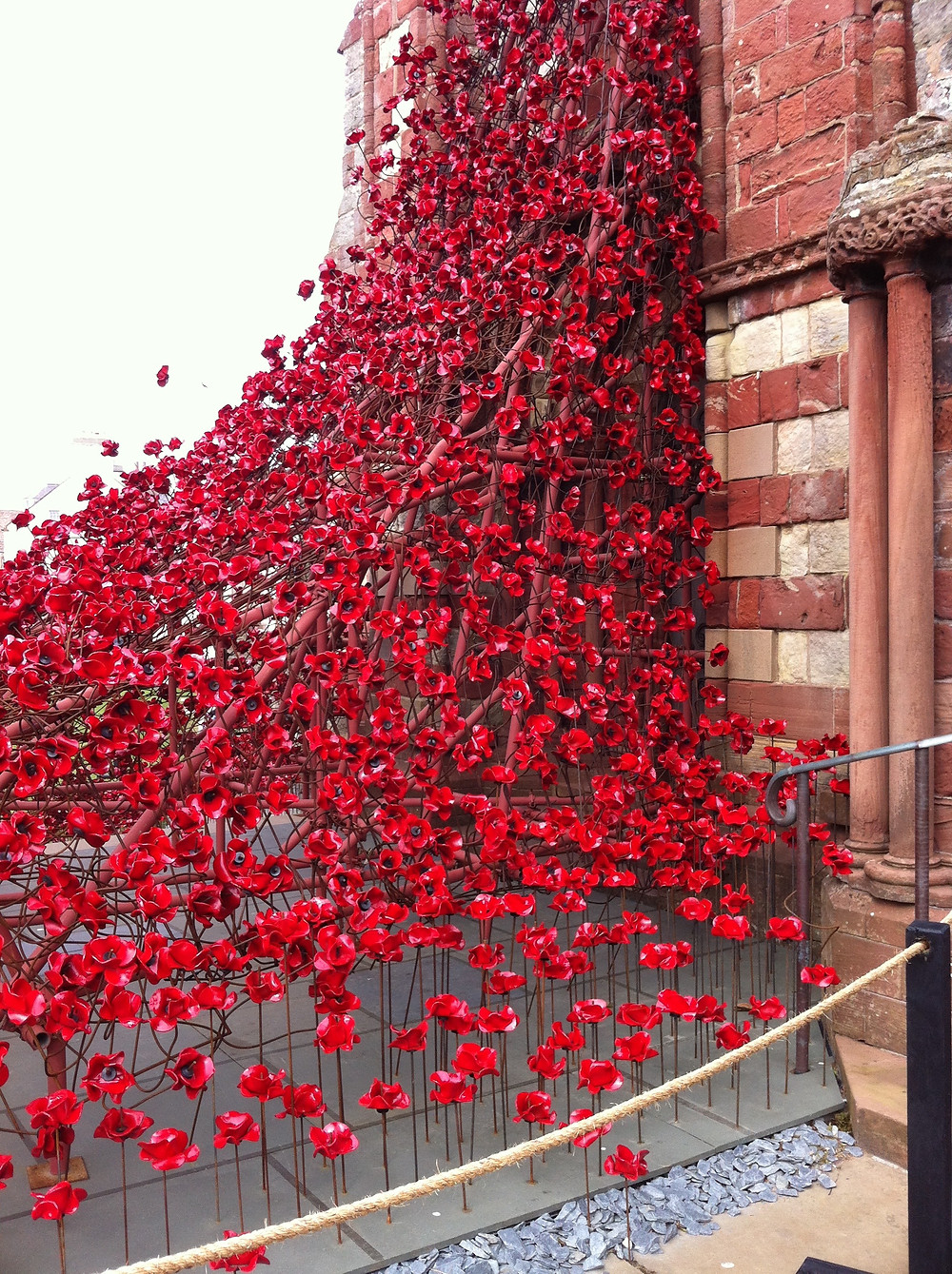 Art installation of Poppies close-up