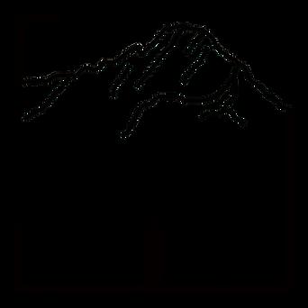 玉山線條.png