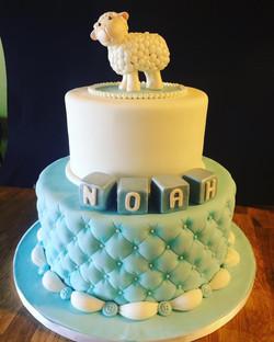 noah sheep baptism
