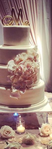 ann's rose.jpg