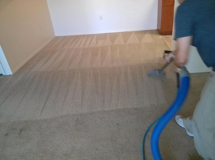 Steam Cleaning Springhill Fl