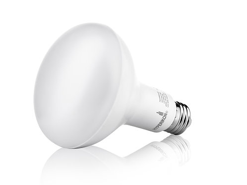 Hyperikon BR30 LED Bulb