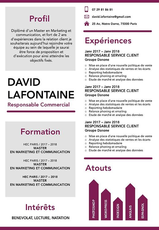 DAVID LAFONTAINE