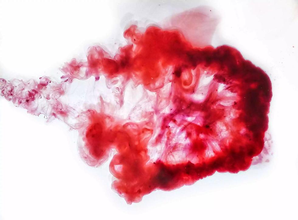 vulvani blood.webp