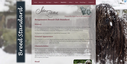 Silver Pastori Website Breed Std