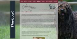 Silver Pastori Website The Coat