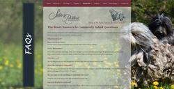 Silver Pastori Website FAQ