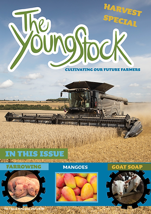 The August Issue