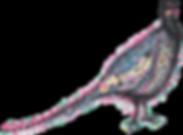 MaesOak Pheasant Logo.png