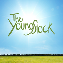 The Young Stock.