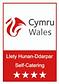 Cymru Wales Logo